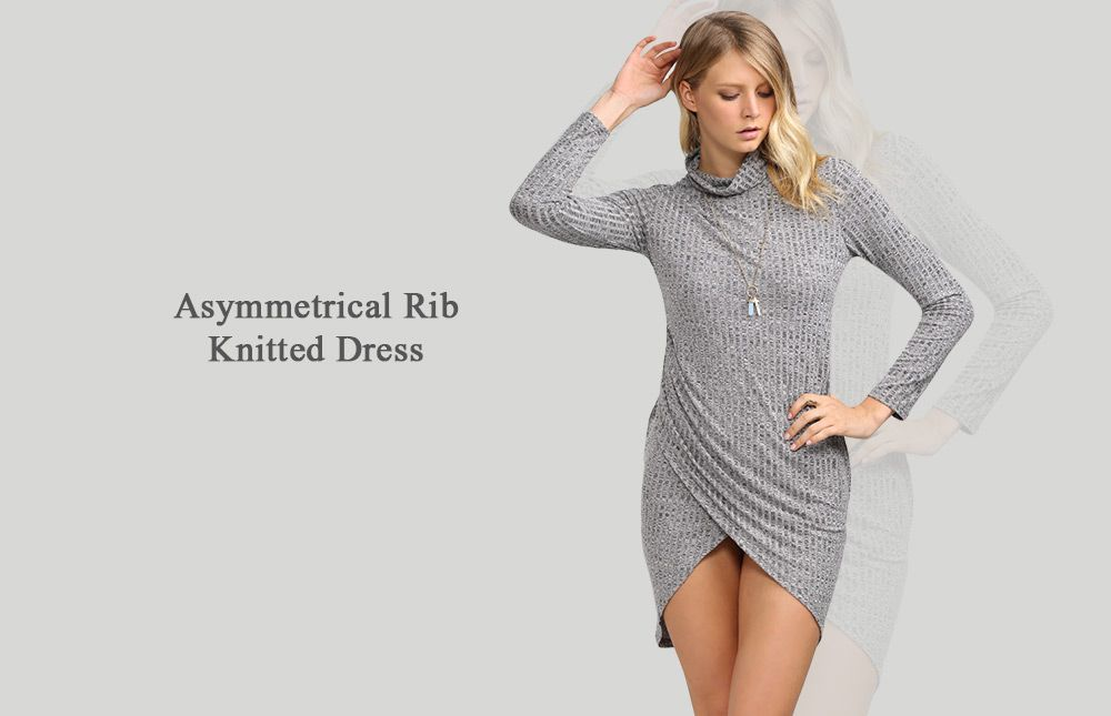 Brief Turtleneck Rib Knitted Asymmetrical Women Mini Dress